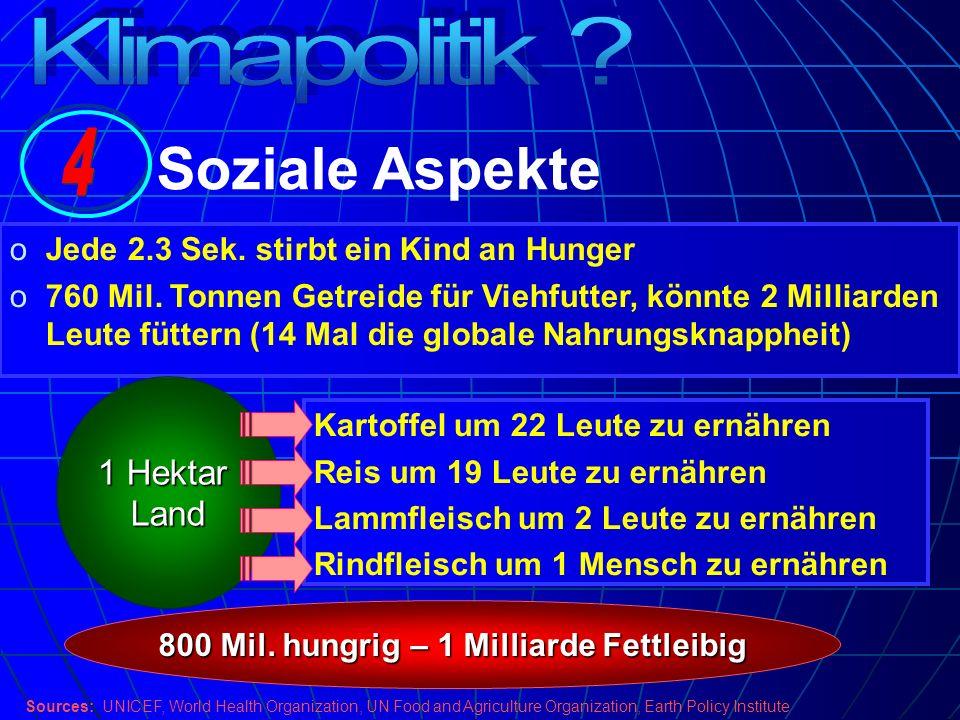 oJede 2.3 Sek. stirbt ein Kind an Hunger o760 Mil. Tonnen Getreide für Viehfutter, könnte 2 Milliarden Leute füttern (14 Mal die globale Nahrungsknapp