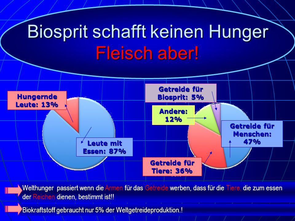 Hungernde Leute: 13% Leute mit Essen: 87% Getreide für Biosprit: 5% Andere: 12% Getreide für Menschen: 47% Getreide für Tiere: 36% Biosprit schafft ke