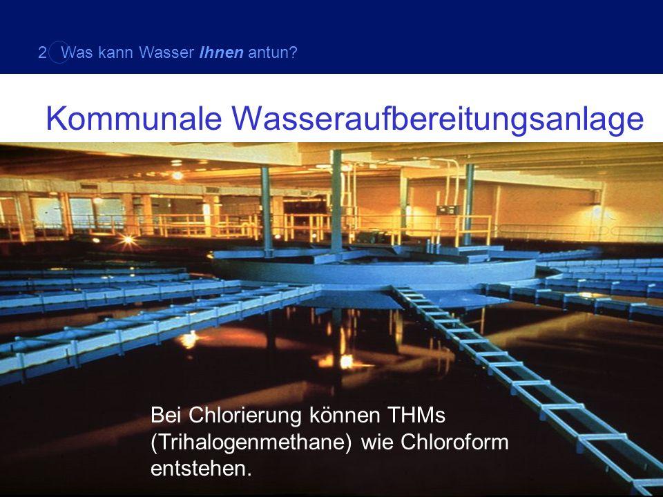 Bei Chlorierung können THMs (Trihalogenmethane) wie Chloroform entstehen. Kommunale Wasseraufbereitungsanlage 2 Was kann Wasser Ihnen antun?