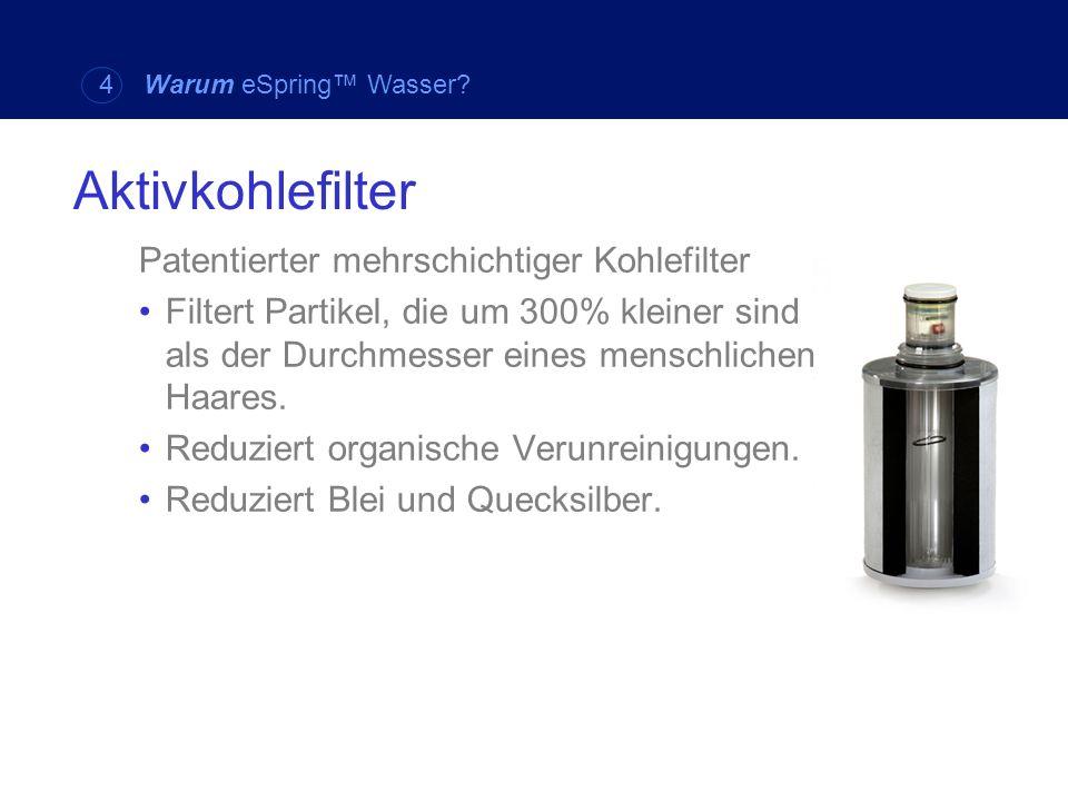 Patentierter mehrschichtiger Kohlefilter Filtert Partikel, die um 300% kleiner sind als der Durchmesser eines menschlichen Haares. Reduziert organisch