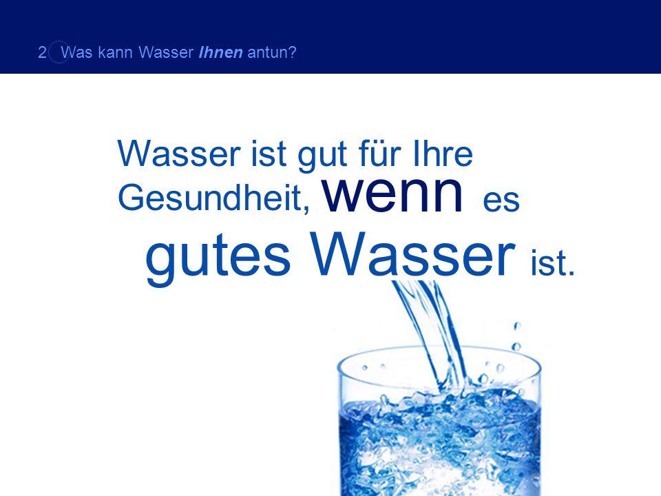 Wasser ist gut für Ihre Gesundheit, wenn es gutes Wasser ist. 2 Was kann Wasser Ihnen antun?