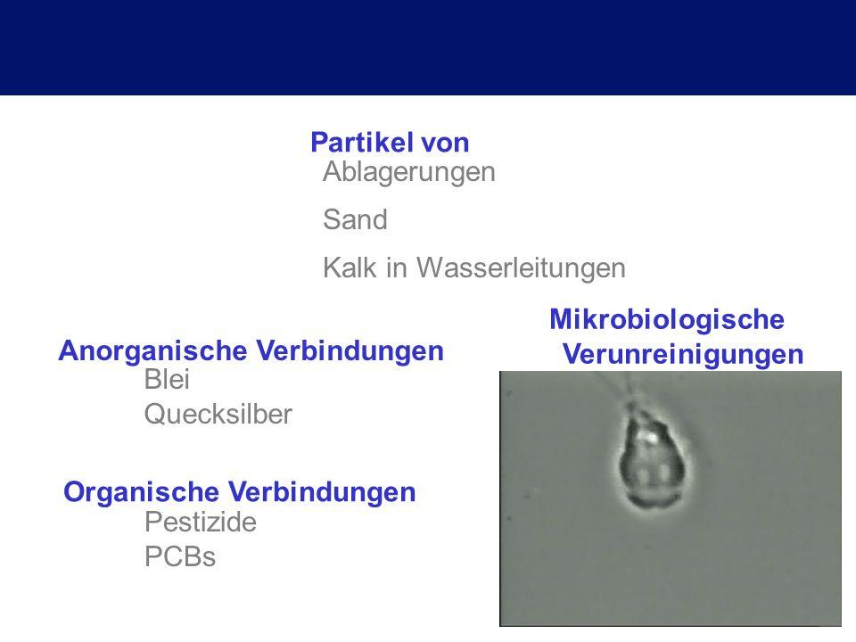 Organische Verbindungen Mikrobiologische Verunreinigungen Ablagerungen Sand Kalk in Wasserleitungen Partikel von Anorganische Verbindungen Blei Quecks