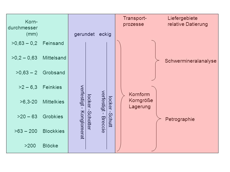 2 Sedimentherkunft Geologische Übersicht des Rheingebietes Mittlere Zusammensetzung der Fraktion 16-31,5 mm Kieselgesteine Vulkanite Buntsandstein Klastische Gesteine Quarzit Quarz Main Kieselgesteine Vulkanite Mesozoikum Buntsandstein Klast.