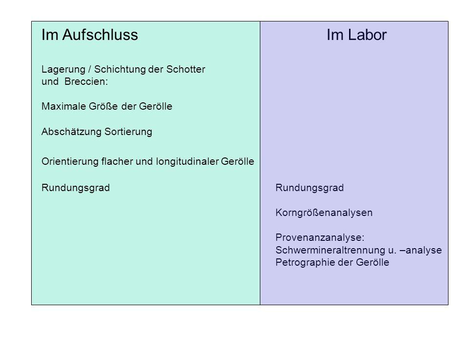 Fallbeispiel Rhein
