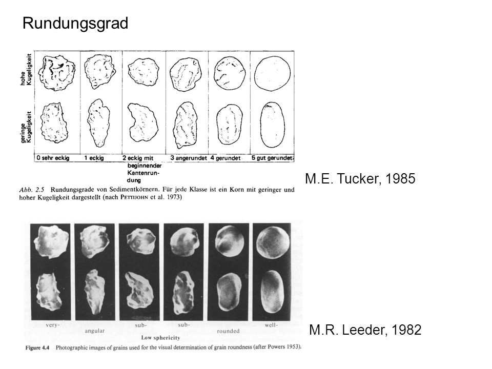 M.R. Leeder, 1982 M.E. Tucker, 1985 Rundungsgrad
