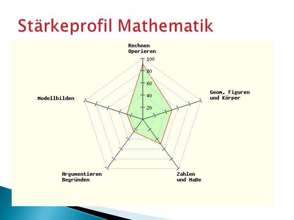Stärkeprofil Mathematik Information über den Lernstand