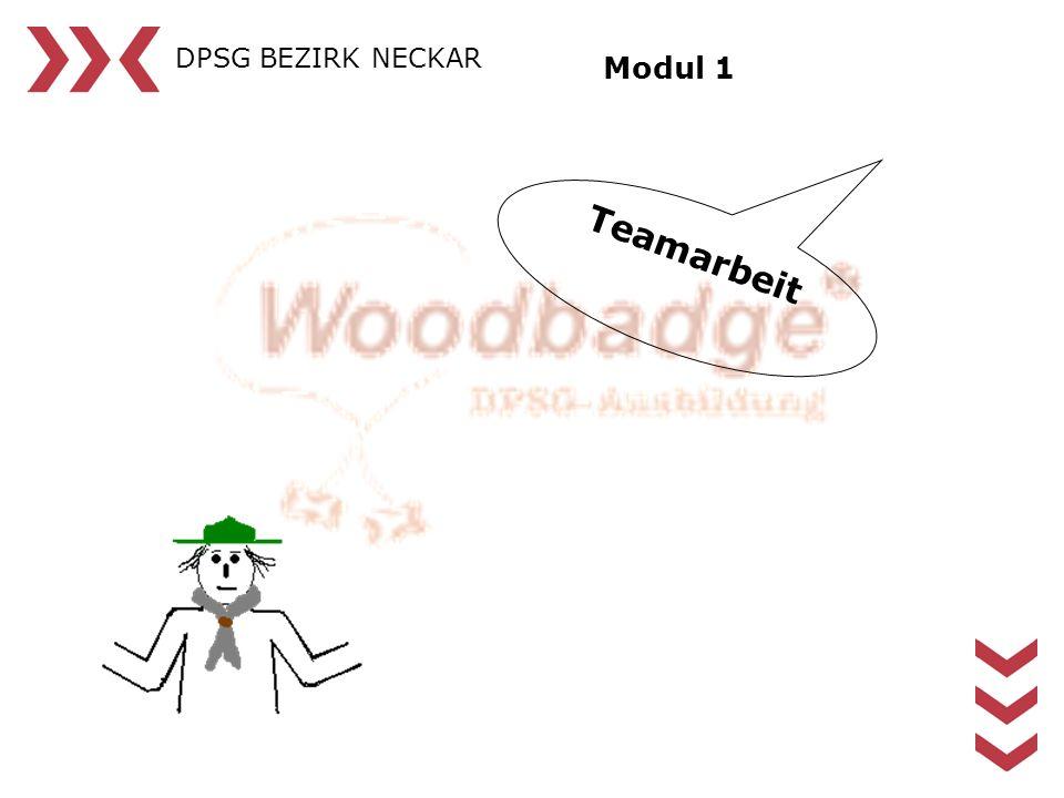 DPSG BEZIRK NECKAR Modul 1 Teamarbeit