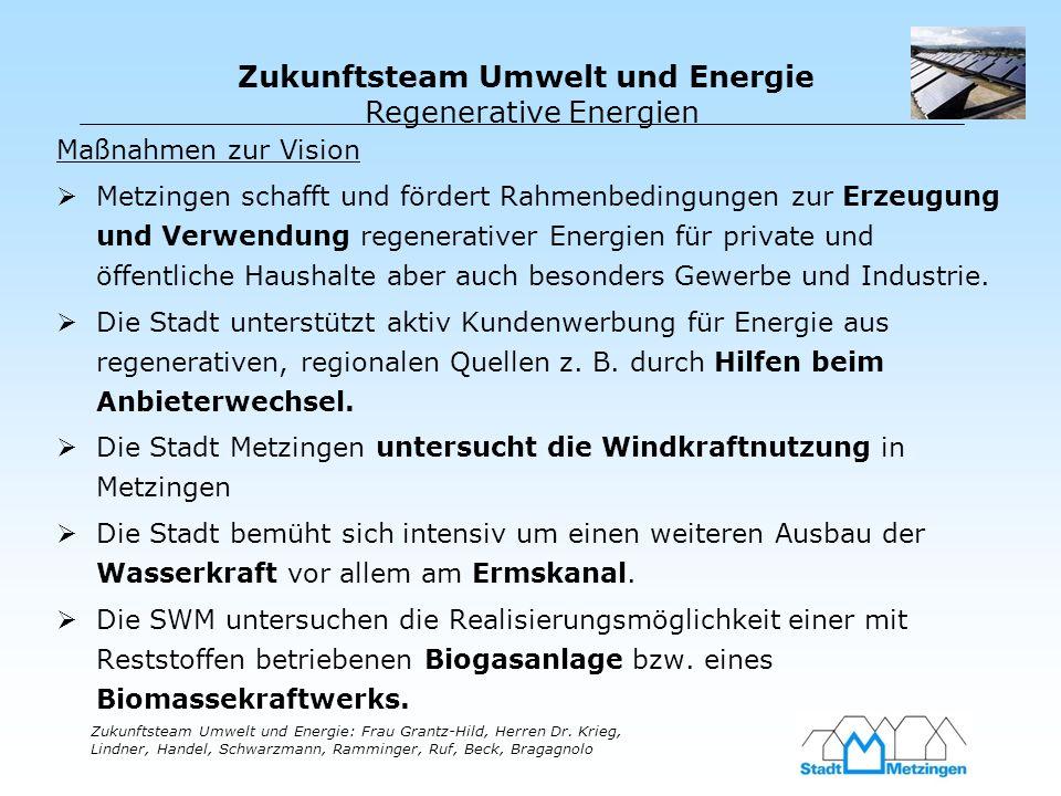 Zukunftsteam Umwelt und Energie Zukunftsteam Umwelt und Energie: Frau Grantz-Hild, Herren Dr. Krieg, Lindner, Handel, Schwarzmann, Ramminger, Ruf, Bec