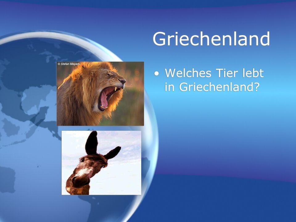 Griechenland Welches Tier lebt in Griechenland?