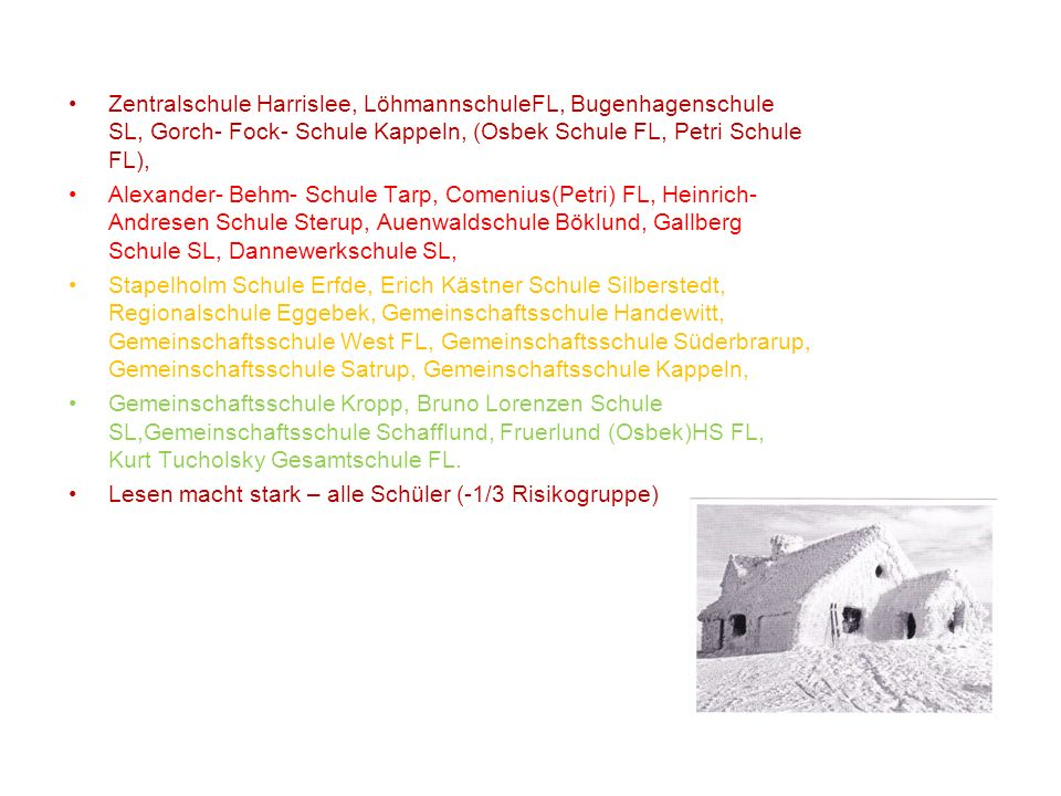 Zentralschule Harrislee, LöhmannschuleFL, Bugenhagenschule SL, Gorch- Fock- Schule Kappeln, (Osbek Schule FL, Petri Schule FL), Alexander- Behm- Schul