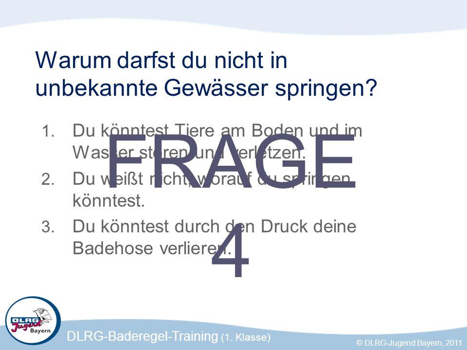 DLRG-Baderegel-Training (1. Klasse) © DLRG-Jugend Bayern, 2011 Warum darfst du nicht in unbekannte Gewässer springen? 1. Du könntest Tiere am Boden un