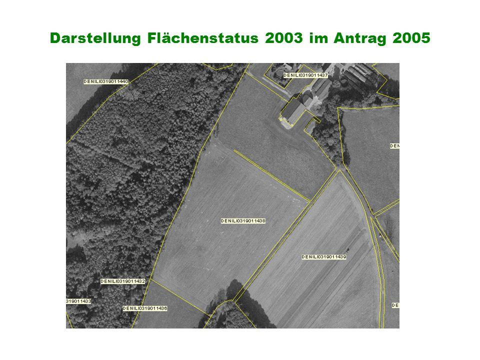 Darstellung Flächenstatus 2003 im Antrag 2005