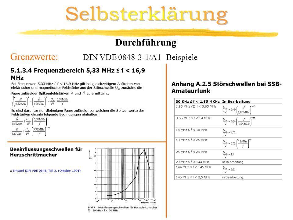 Grenzwerte: DIN VDE 0848-3-1/A1 Beispiele Durchführung