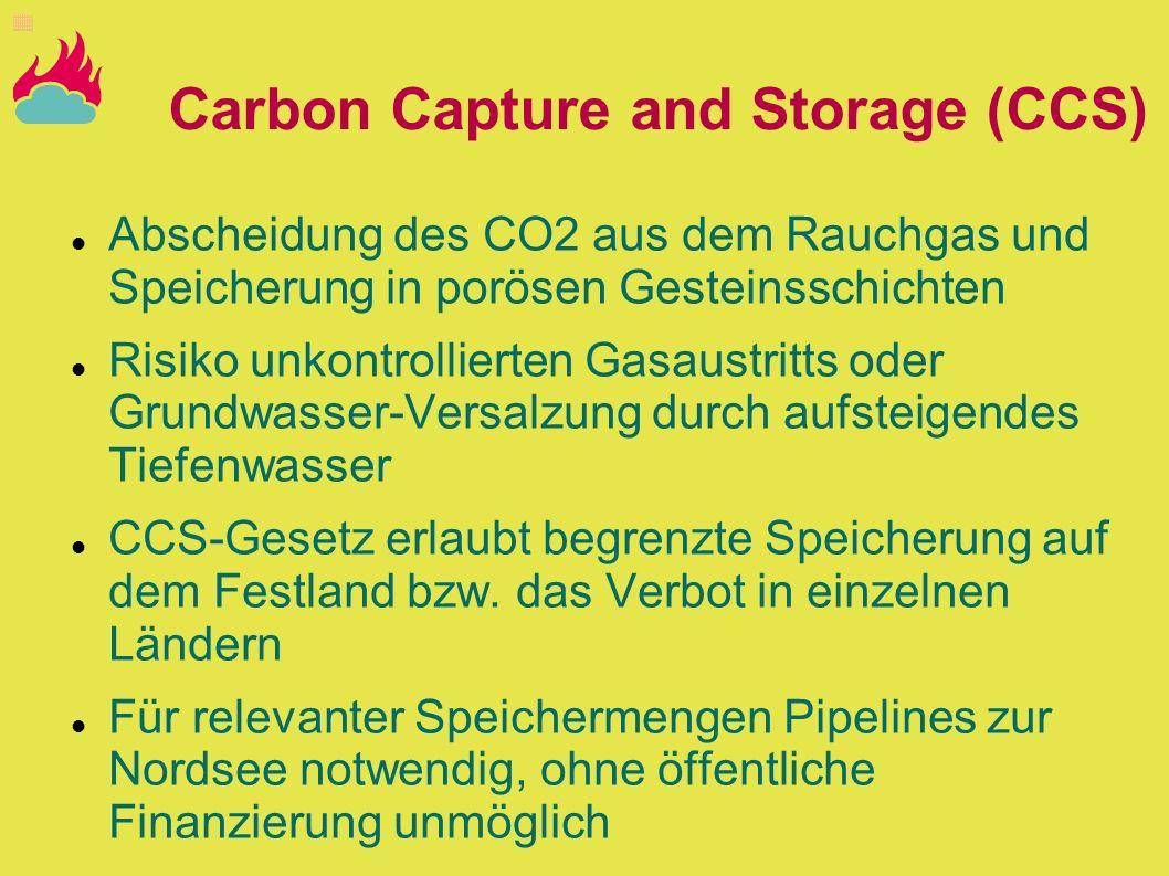 Carbon Capture and Storage (CCS) Abscheidung des CO2 aus dem Rauchgas und Speicherung in porösen Gesteinsschichten Risiko unkontrollierten Gasaustritt