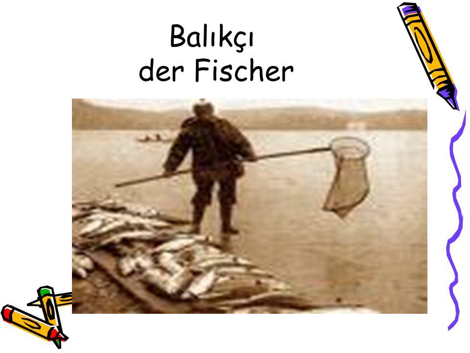 Balıkçı der Fischer