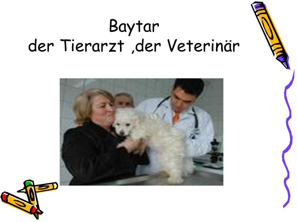 Baytar der Tierarzt,der Veterinär