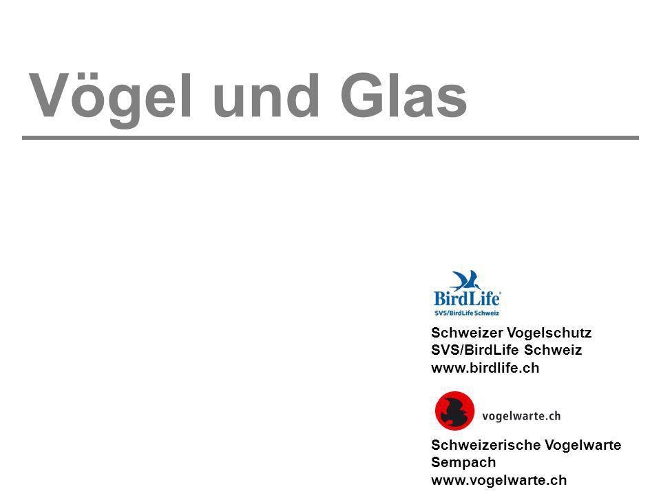 Vögel und Glas Schweizerische Vogelwarte Sempach www.vogelwarte.ch Schweizer Vogelschutz SVS/BirdLife Schweiz www.birdlife.ch