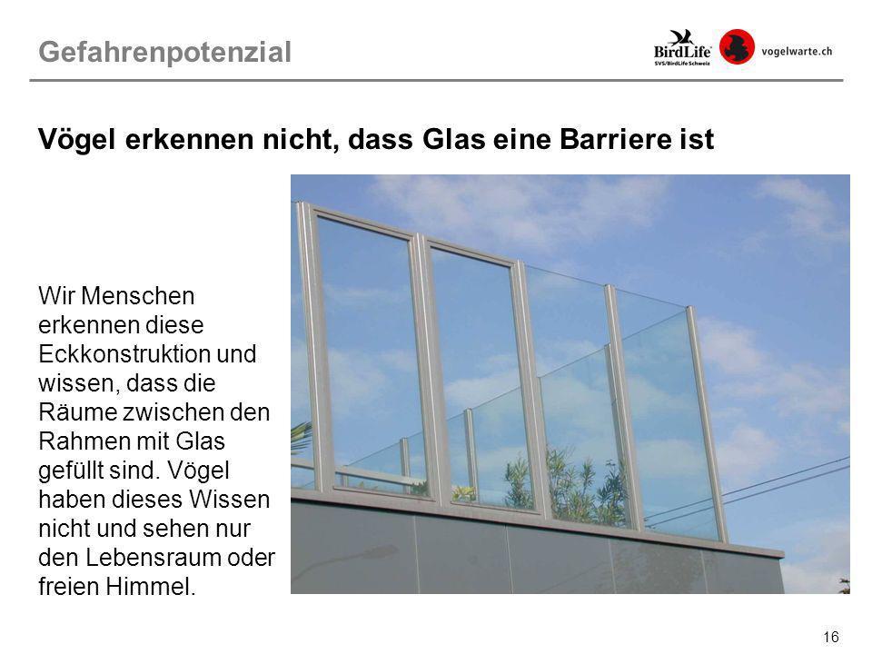 16 Wir Menschen erkennen diese Eckkonstruktion und wissen, dass die Räume zwischen den Rahmen mit Glas gefüllt sind. Vögel haben dieses Wissen nicht u