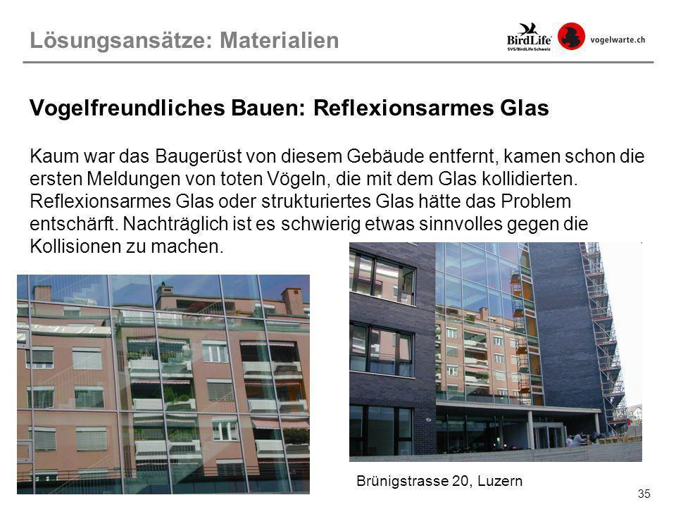 35 Vogelfreundliches Bauen: Reflexionsarmes Glas Kaum war das Baugerüst von diesem Gebäude entfernt, kamen schon die ersten Meldungen von toten Vögeln