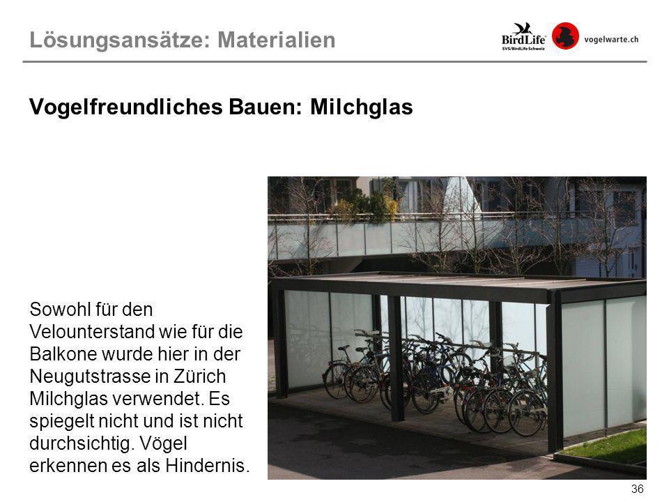 36 Sowohl für den Velounterstand wie für die Balkone wurde hier in der Neugutstrasse in Zürich Milchglas verwendet. Es spiegelt nicht und ist nicht du
