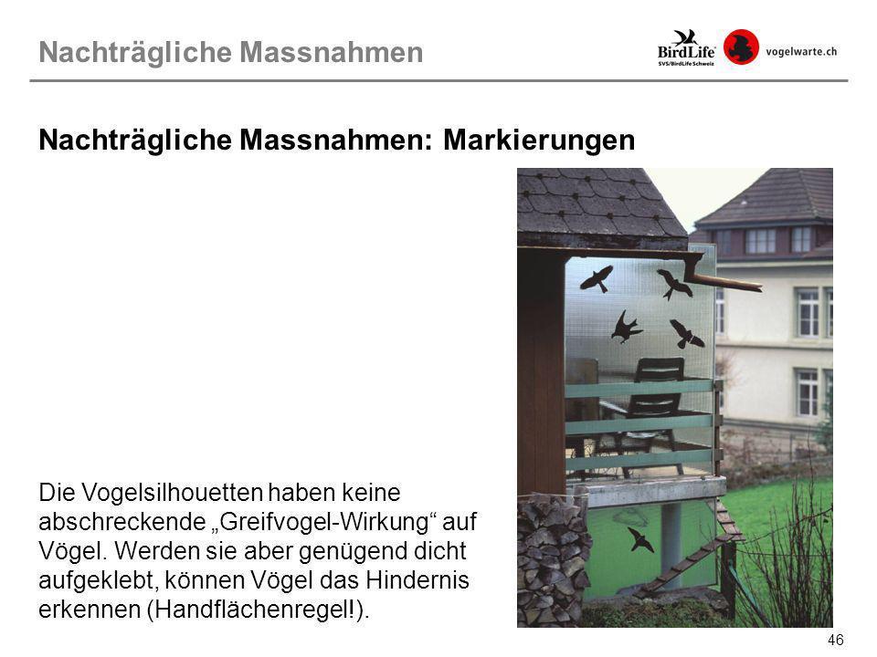 46 Nachträgliche Massnahmen: Markierungen Die Vogelsilhouetten haben keine abschreckende Greifvogel-Wirkung auf Vögel. Werden sie aber genügend dicht