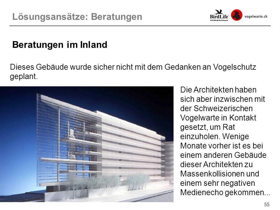 55 Lösungsansätze: Beratungen Beratungen im Inland Dieses Gebäude wurde sicher nicht mit dem Gedanken an Vogelschutz geplant. Die Architekten haben si
