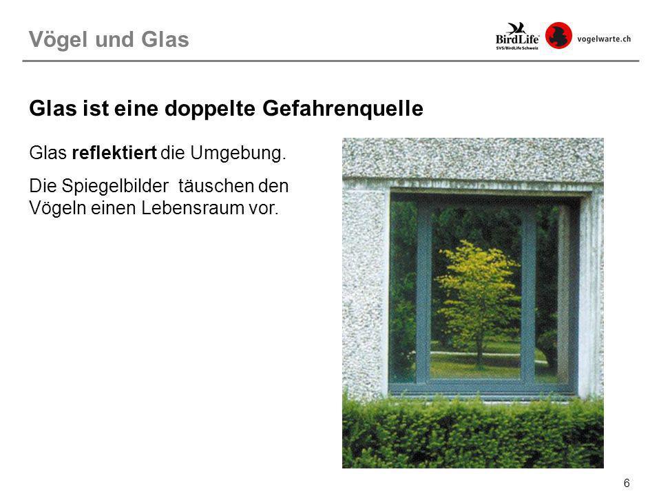 27 Vogelfreundliches Bauen: Glasflächen unterbrechen Diese vertikalen Lamellen unterbrechen die einheitliche Glasfläche die dahinter liegt.