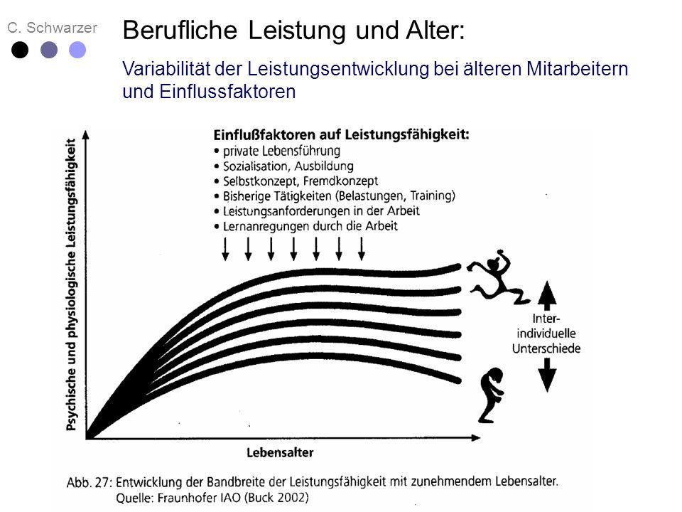 C. Schwarzer Berufliche Leistung und Alter: Variabilität der Leistungsentwicklung bei älteren Mitarbeitern und Einflussfaktoren