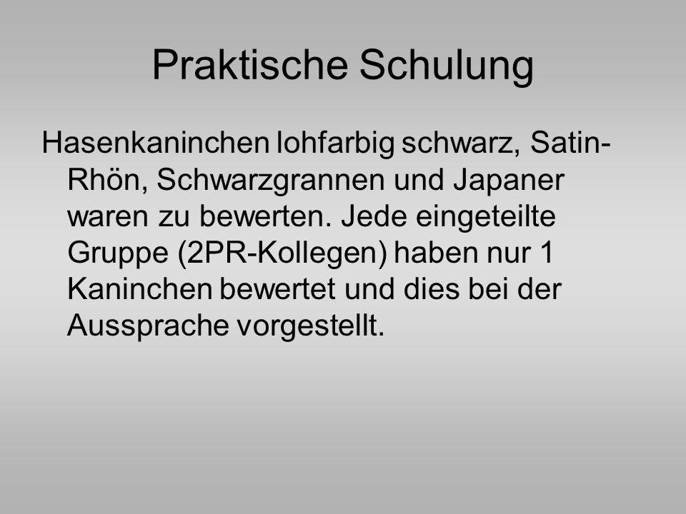 Praktische Schulung Hasenkaninchen lohfarbig schwarz, Satin- Rhön, Schwarzgrannen und Japaner waren zu bewerten. Jede eingeteilte Gruppe (2PR-Kollegen