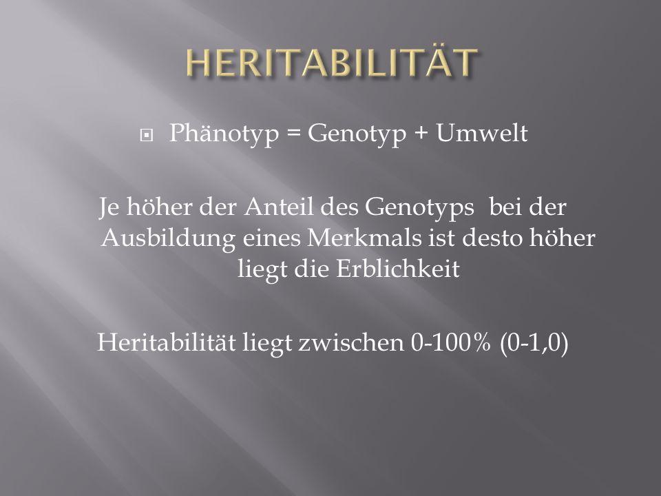 Phänotyp = Genotyp + Umwelt Je höher der Anteil des Genotyps bei der Ausbildung eines Merkmals ist desto höher liegt die Erblichkeit Heritabilität lie