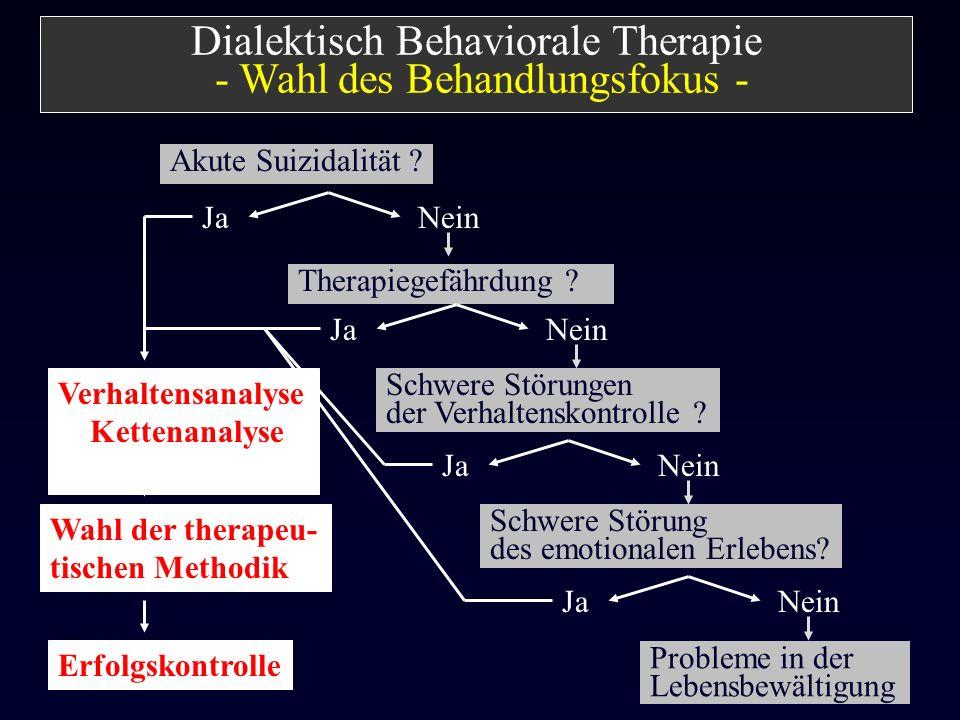 Akute Suizidalität ? Erfolgskontrolle Probleme in der Lebensbewältigung Therapiegefährdung ? JaNein Schwere Störung des emotionalen Erlebens? JaNein D