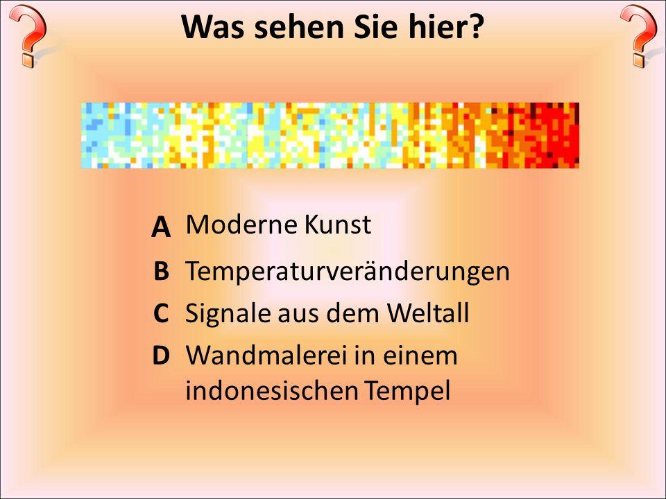 Was sehen Sie hier? A Moderne Kunst BTemperaturveränderungen CSignale aus dem Weltall DWandmalerei in einem indonesischen Tempel