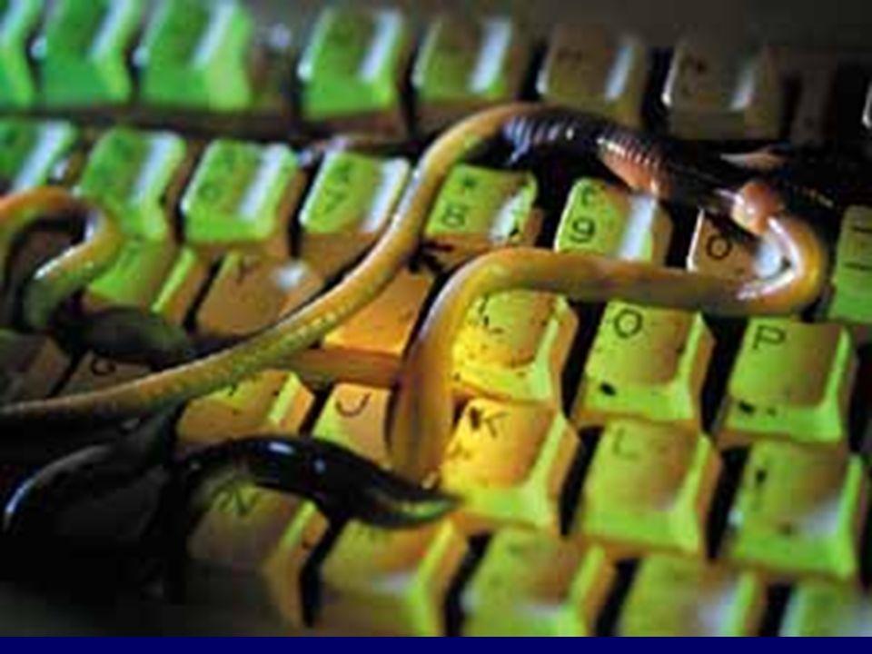Erklärung + Verbreitung Würmer sind eine Art Virus, welche sich meistens über E-Mails verbreiten.