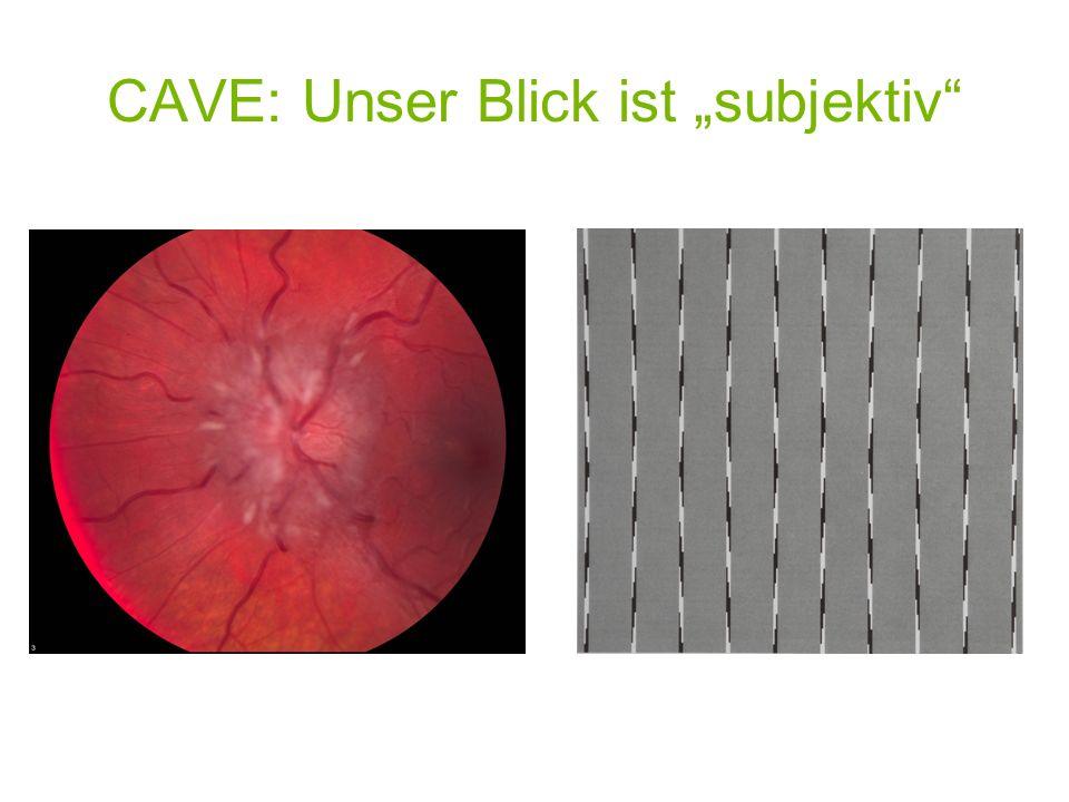 CAVE: Unser Blick ist subjektiv