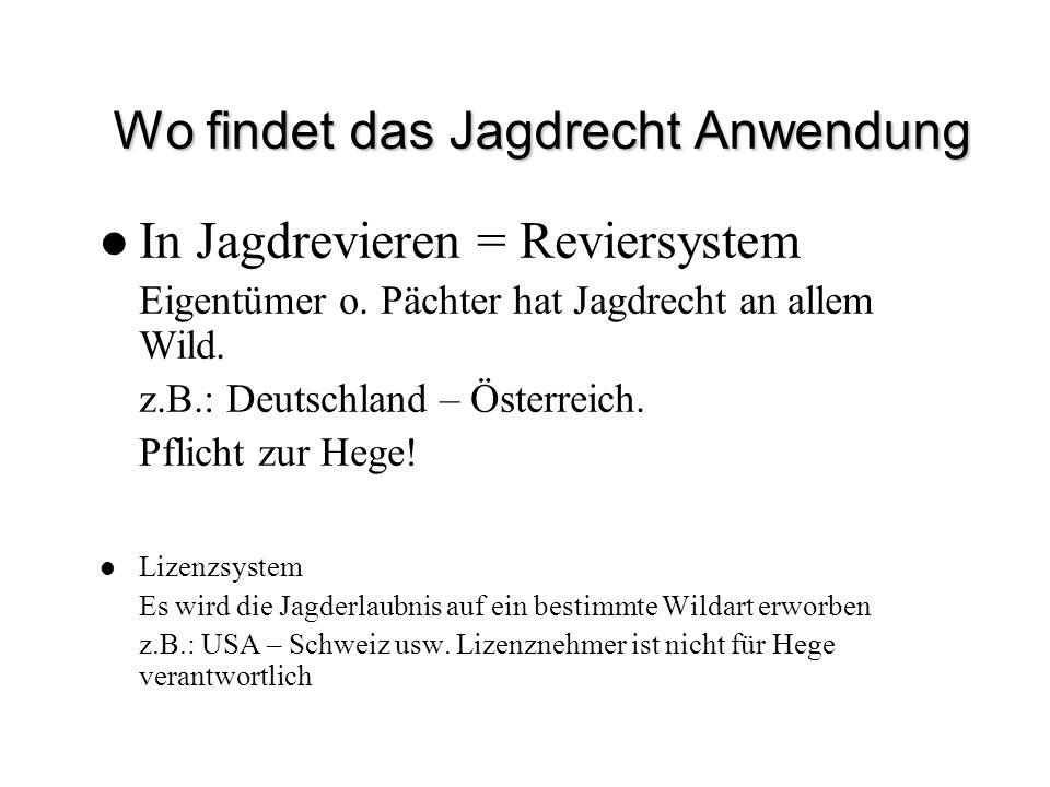 Wo findet das Jagdrecht Anwendung In Jagdrevieren = Reviersystem Eigentümer o. Pächter hat Jagdrecht an allem Wild. z.B.: Deutschland – Österreich. Pf