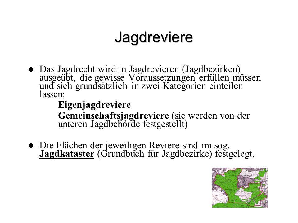 Jagdreviere Das Jagdrecht wird in Jagdrevieren (Jagdbezirken) ausgeübt, die gewisse Voraussetzungen erfüllen müssen und sich grundsätzlich in zwei Kat