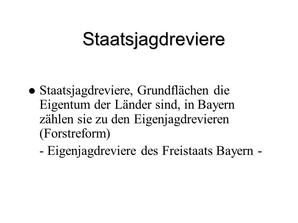 Staatsjagdreviere Staatsjagdreviere, Grundflächen die Eigentum der Länder sind, in Bayern zählen sie zu den Eigenjagdrevieren (Forstreform) - Eigenjag