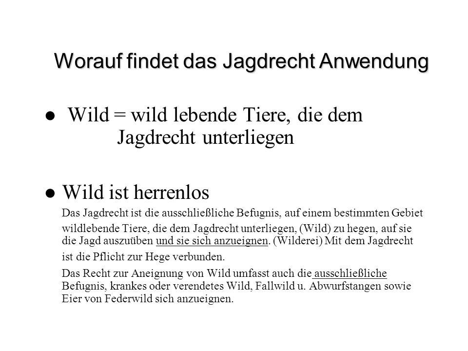Worauf findet das Jagdrecht Anwendung Wild = wild lebende Tiere, die dem Jagdrecht unterliegen Wild ist herrenlos Das Jagdrecht ist die ausschließlich