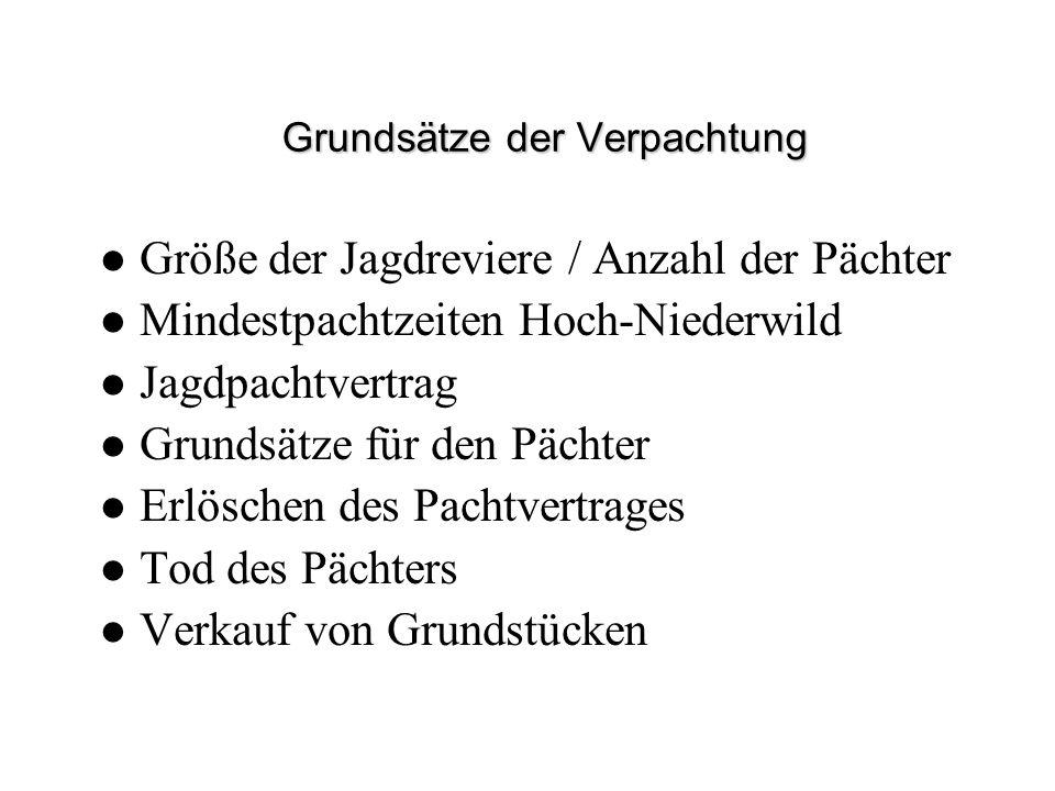Grundsätze der Verpachtung Größe der Jagdreviere / Anzahl der Pächter Mindestpachtzeiten Hoch-Niederwild Jagdpachtvertrag Grundsätze für den Pächter E