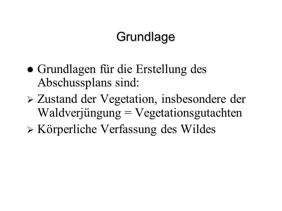 Grundlage Grundlagen für die Erstellung des Abschussplans sind: Zustand der Vegetation, insbesondere der Waldverjüngung = Vegetationsgutachten Körperl