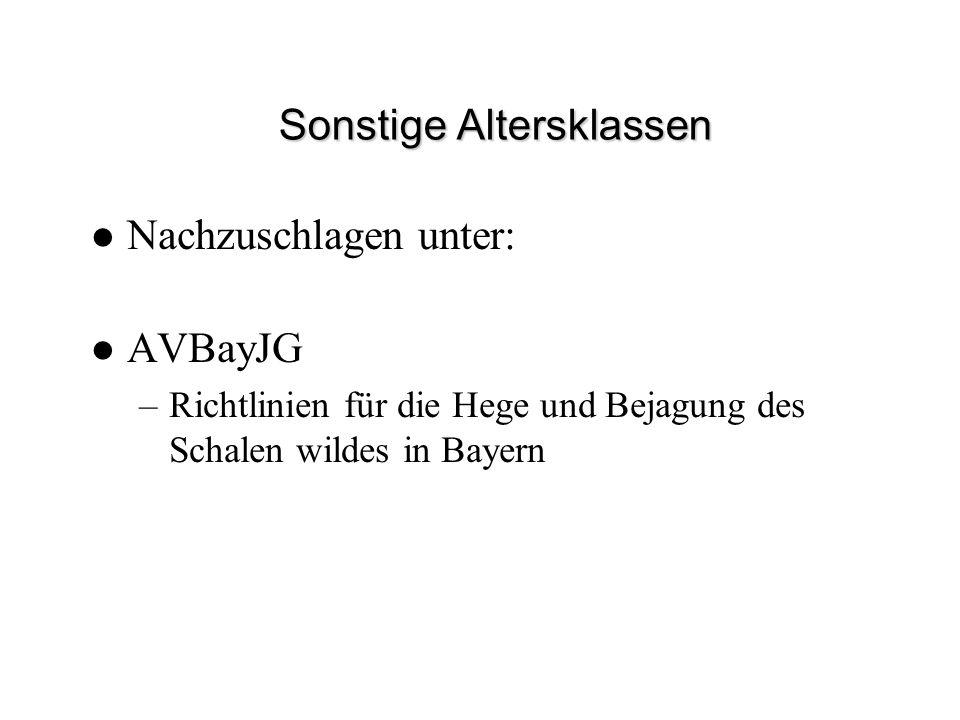 Sonstige Altersklassen Nachzuschlagen unter: AVBayJG –Richtlinien für die Hege und Bejagung des Schalen wildes in Bayern