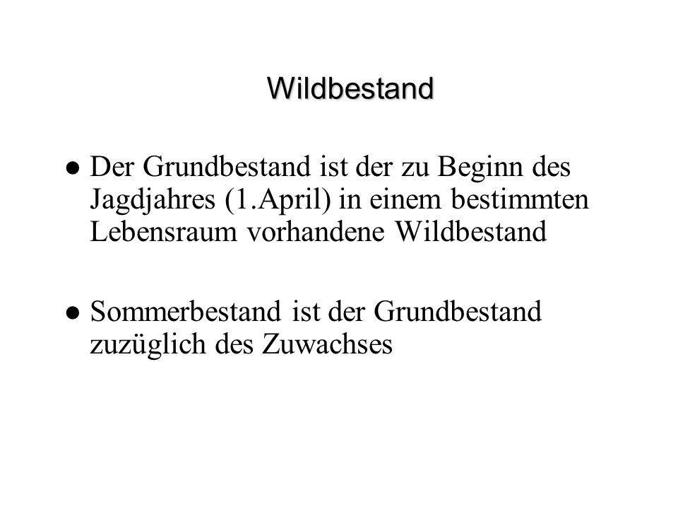 Wildbestand Der Grundbestand ist der zu Beginn des Jagdjahres (1.April) in einem bestimmten Lebensraum vorhandene Wildbestand Sommerbestand ist der Gr
