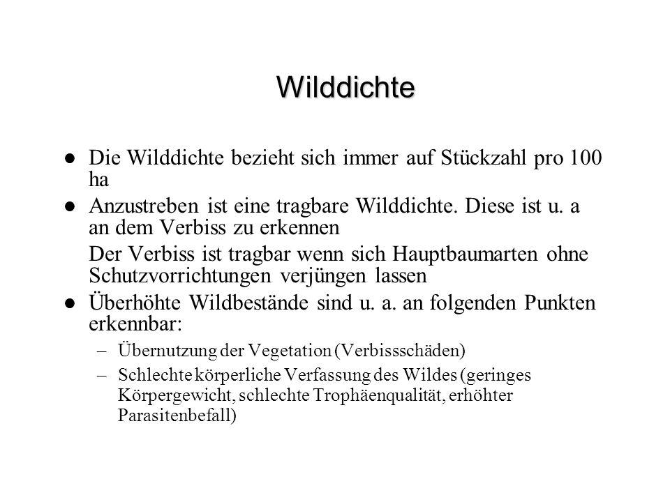 Wilddichte Die Wilddichte bezieht sich immer auf Stückzahl pro 100 ha Anzustreben ist eine tragbare Wilddichte. Diese ist u. a an dem Verbiss zu erken