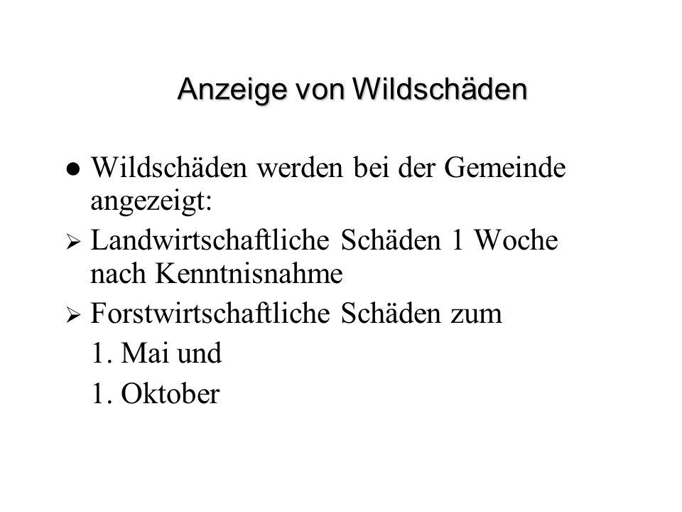 Anzeige von Wildschäden Wildschäden werden bei der Gemeinde angezeigt: Landwirtschaftliche Schäden 1 Woche nach Kenntnisnahme Forstwirtschaftliche Sch