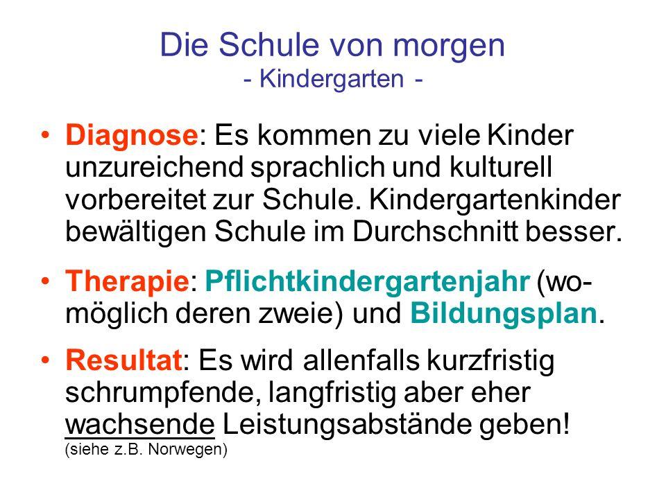 Die Schule von morgen - Kindergarten - Diagnose: Es kommen zu viele Kinder unzureichend sprachlich und kulturell vorbereitet zur Schule. Kindergartenk
