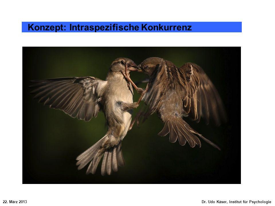 22. März 2013 Dr. Udo Käser, Institut für Psychologie Konzept: Intraspezifische Konkurrenz