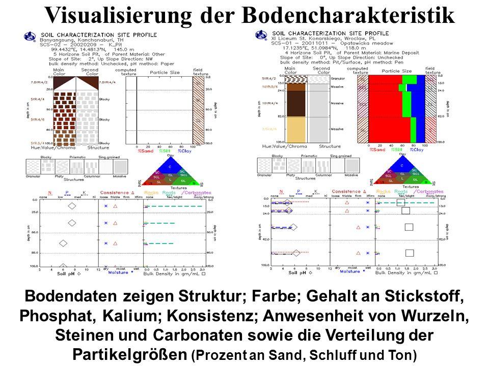 Bodendaten zeigen Struktur; Farbe; Gehalt an Stickstoff, Phosphat, Kalium; Konsistenz; Anwesenheit von Wurzeln, Steinen und Carbonaten sowie die Verte