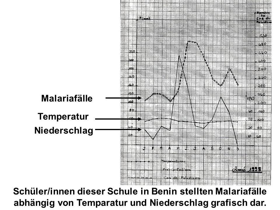 Temperatur Niederschlag Malariafälle Schüler/innen dieser Schule in Benin stellten Malariafälle abhängig von Temparatur und Niederschlag grafisch dar.