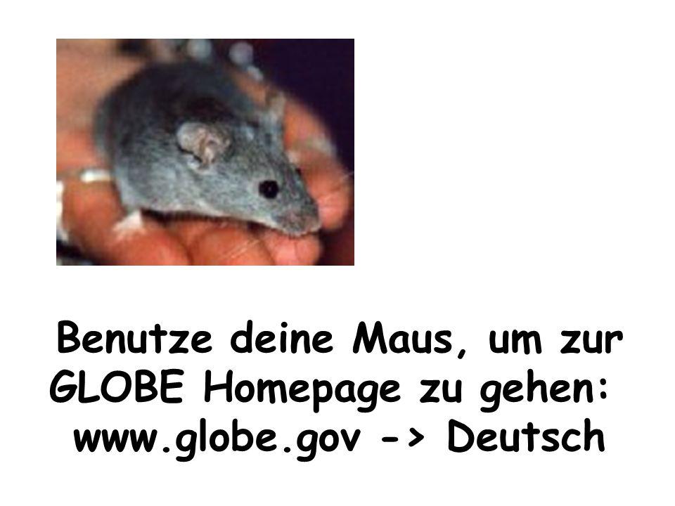 Benutze deine Maus, um zur GLOBE Homepage zu gehen: www.globe.gov -> Deutsch