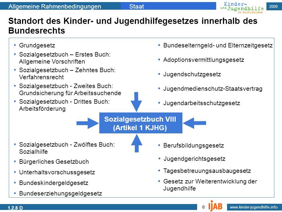 2009 Allgemeine RahmenbedingungenStaat www.kinder-jugendhilfe.info © Sozialgesetzbuch VIII (Artikel 1 KJHG) Grundgesetz Sozialgesetzbuch – Erstes Buch